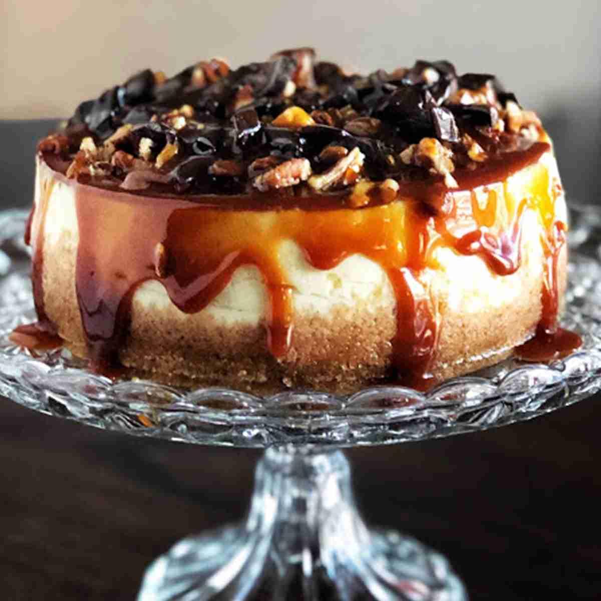 turtledove cheesecake